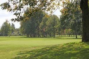 Hole 13 green 1-Golfclub Flevoland