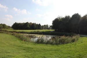 Hole 16 (10) waterhindernis-Golfclub Flevoland
