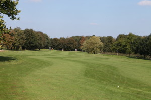Hole 17 (11) fairway-Golfclub Flevoland