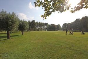 Hole 5 (5) green 1-Golfclub Flevoland