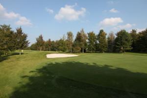 Hole 7 (7) green-Golfclub Flevoland