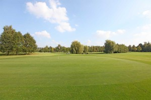 Hole 8 (8) green 1-Golfclub Flevoland