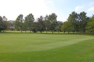 Hole 8 (8) green 2-Golfclub Flevoland