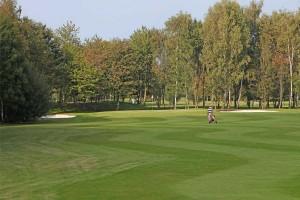 Hole 8 (8) green 3-Golfclub Flevoland