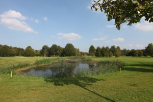 Hole 9 (9) waterhindernis-Golfclub Flevoland